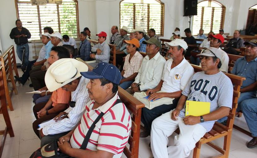 De acuerdo a la calendarización que les proporcionaron, el día 8 de agosto próximo deberán recibir una resolución. (Javier Ortiz/SIPSE)