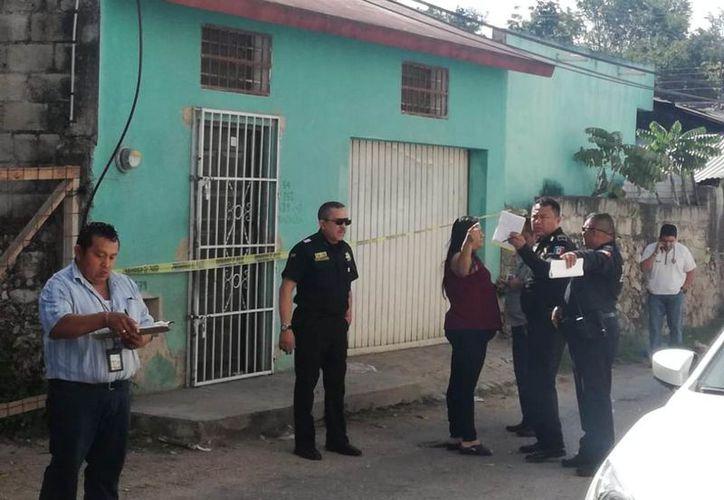 Vecinos escucharon ruidos durante la madrugada. (Novedades Yucatán)