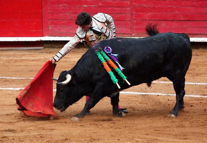 Javier Escobar Hernández dejó su carrera de matador por una oportunidad de trabajo en la Suprema Corte de Justicia de la Nación. (Imagen de referencia/Archivo/Notimex)