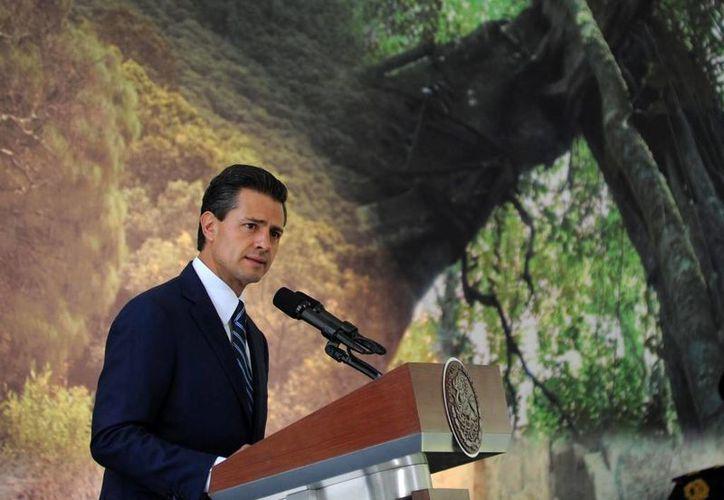 Enrique Peña Nieto inauguró la Semana Nacional del Medio Ambiente en la Residencia Oficial de Los Pinos. (presidencia.gob.mx)