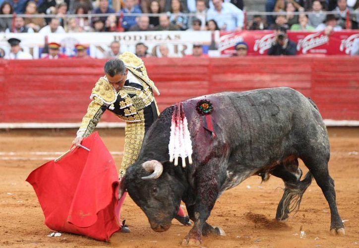 Eulalio López 'Zotoluco' brindó una magistral clase de toreo en la Feria de Texcoco. donde cortó dos orejas. (EFE)