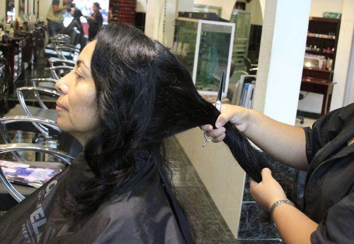Los requisitos para los futuros donadores es que el cabello mida 30 centímetros . (Ángel Castilla/SIPSE)