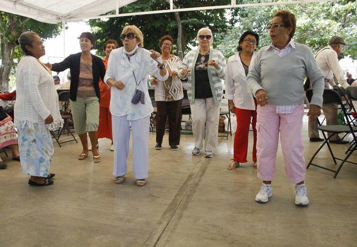 El grupo de adultos practican tai chi dos veces por semana. (Israel leal/SIPSE)