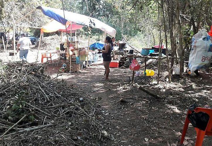 En el sitio se pueden observar lonas que sirven de techo, hamacas, bancas improvisadas y fogones para preparar alimentos. (Javier Ortiz/SIPSE)