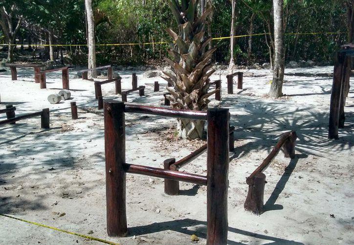 Dieron mantenimiento y pintaron el gimnasio rústico, además de poda y recolección de basura vegetal. (Foto: Redacción)
