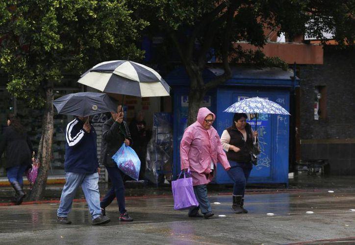 Se prevén luvias con intervalos de chubascos en Hidalgo y Yucatán y lluvias escasas o lloviznas en Tamaulipas y San Luis Potosí. (Notimex)
