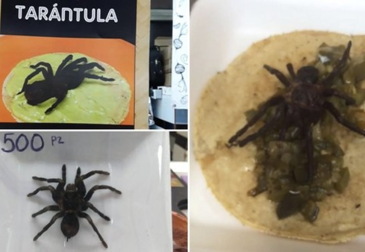 """Los tacos de tarántula se servían en un restaurante de un típico mercado, llamado """"México en el Paladar"""". (Infobae)"""