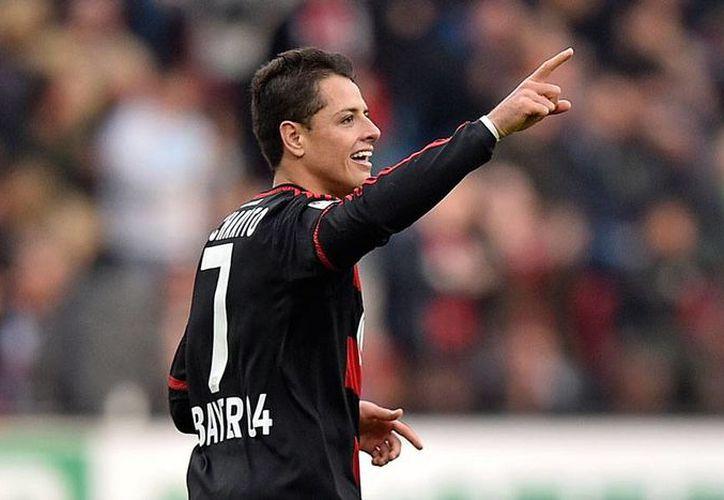 Javier 'Chicharito' Hernández anda con la pólvora seca: tres goles en una semana. Este sábado, contribuyó con uno para la victoria del Leverkusen ante el Stuttgart. (AP)