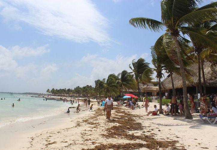 Buscan encontrar vías de acceso libre para acceder a las playas de la Bahía. (Foto: Sara Cauich/SIPSE).