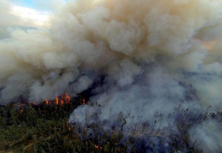 Desalojan a habitantes del cerro Ramaditas, en la parte alta de Valparaíso, Chile, donde se reactivó el incendio. (EFE)