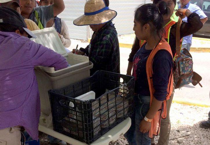 Los comerciantes venden alimentos a los trabajadores de una obra en construcción. (Cortesía)