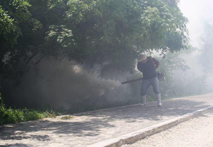 Las autoridades mantendrán las labores de nebulización para prevenir la proliferación del mosco transmisor del zika. (Octavio Martínez/SIPSE)