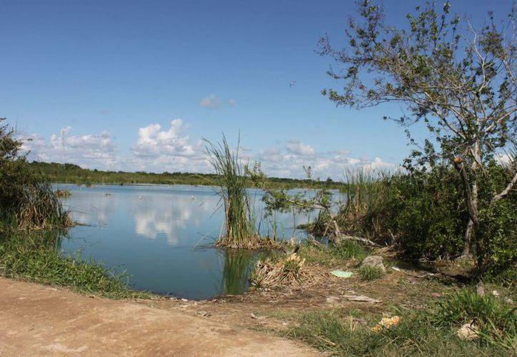 La Sabana tiene una extensión de más de 12 kilómetros y contempla varias colonias. (Harold Alcocer/SIPSE)