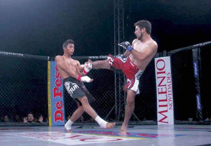 Las artes marciales mixtas van ganando auge entre peleadores yucatecos. (Milenio Novedades)