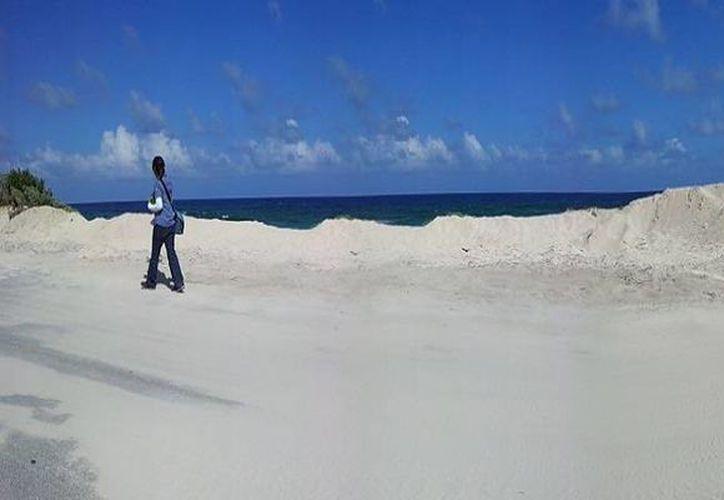 """Imponen nuevos sellos de clausura en el sitio conocido como """"La Porción Norte y la Franja costera oriental, Terrestres y Marinas de la Isla de Cozumel"""". (Redacción/SIPSE)"""