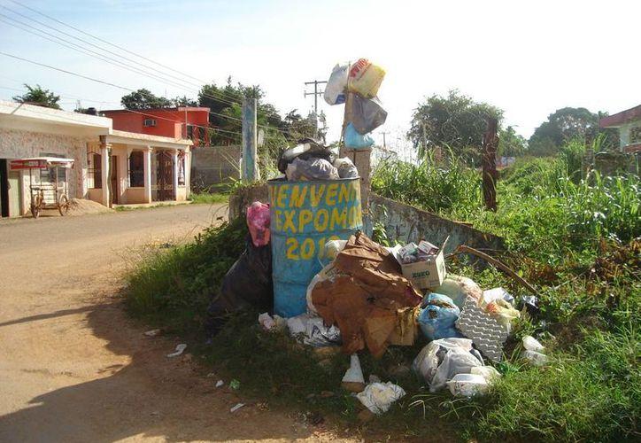 El problema se agrava cuando la fauna canina y felina, dispersa la basura por las calles. (Carlos Yabur/SIPSE)