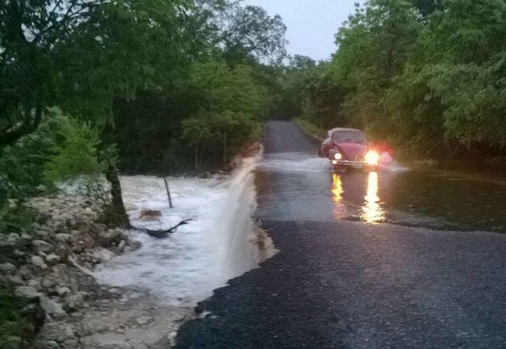 Reportan carreteras intransitables por el paso del agua, cultivos anegados, viviendas y escuelas inundadas. (Javier Ortiz/SIPSE)