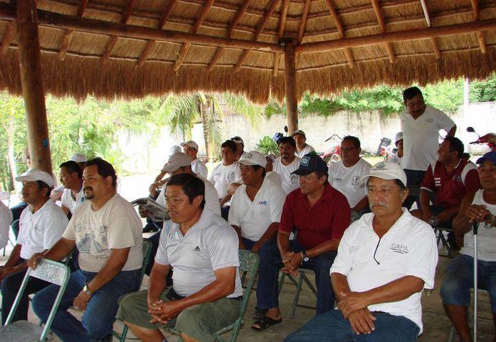 Los miembros del Comité advirtieron que han establecido un plazo de 72 horas para que se inicie un acercamiento. (Manuel Salazar/SIPSE)