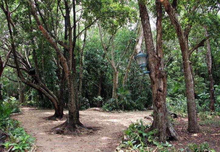Listo y renovado el parque ecológico Kabah. (SIPSE)