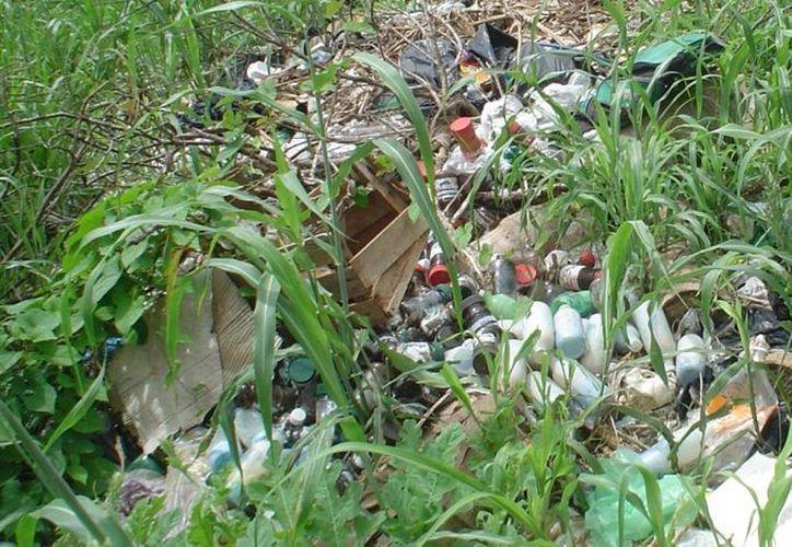 El problema de la basura sólida no fue tomado en cuenta por la actual administración municipal. (Carlos Yabur/SIPSE)