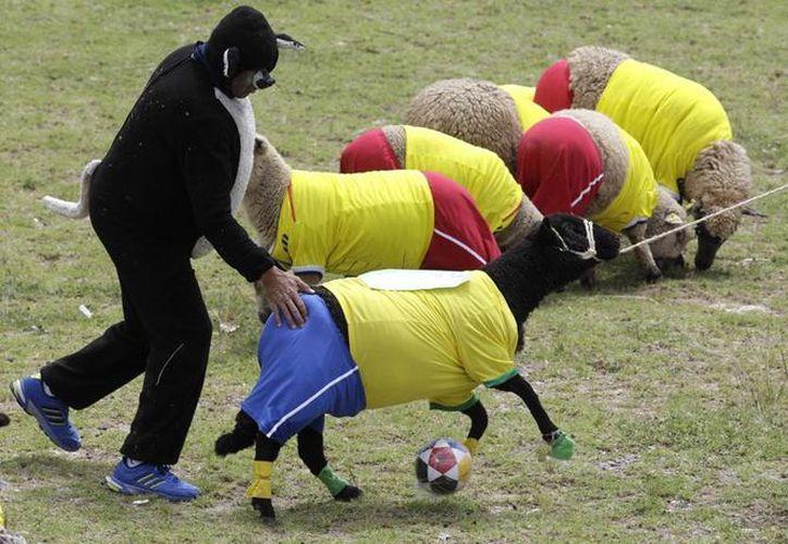 'El Lobo Feroz' fue el árbitro del ovejuno partido entre Colombia y Brasil. (AP)