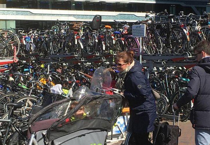 Muchos holandeses viven en una ciudad y trabajan en otra y se ven obligados a viajar el tren, pero eso no es problema para seguir utilizando la bicicleta como medio de transporte: tienen una en cada ciudad. (Notimex)