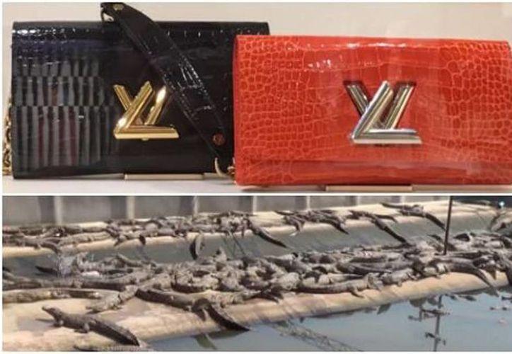 De acuerdo con la organización PETA, Louis Vuitton utiliza la piel de cocodrilos que viven y mueren en condiciones inhumanas. (Milenio)