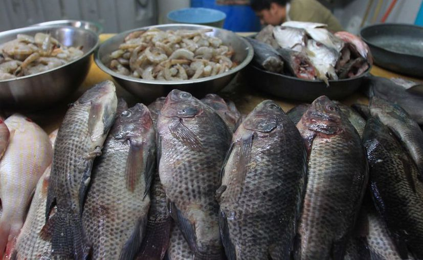 Son 11 los negocios que han sido sancionados por vender productos contaminados. (Foto: Redacción/SIPSE).