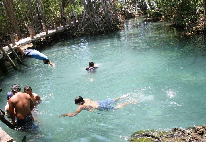 Los bañistas también pueden disfrutar, entre otros sitios, del 'ojo de agua' de Celestún. (Milenio Novedades)