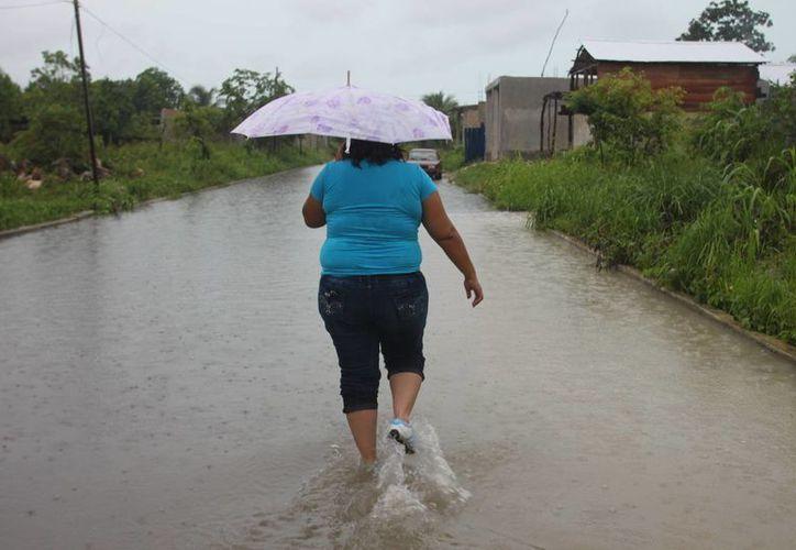 La primera fase del Atlas Estatal de Riesgo de Quintana Roo se centra en fenómenos hidrometeorológicos. (Harold Alcocer/SIPSE)