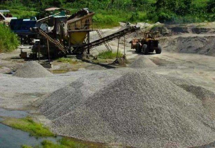 Se detectaron daños en 28 hectáreas de selva baja. (Milenio Novedades)
