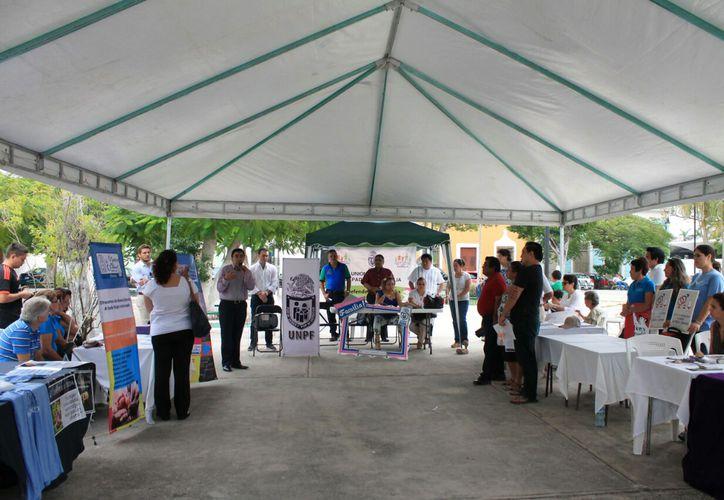 Asociaciones civiles organizaron un foro para dar a conocer sus actividades básicas. El encuentro se realizó en el parque de Santa Ana, en Mérida. (Daniel Sandoval/SIPSE)