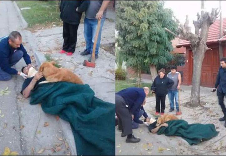 El perro se quedó recostado encima de su dueño hasta que llegó la ambulancia. (Foto: Excélsior)