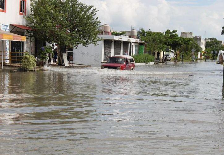 La basura en el drenaje ocasionó las inundaciones en varias zonas. (Adrián Barreto/SIPSE)