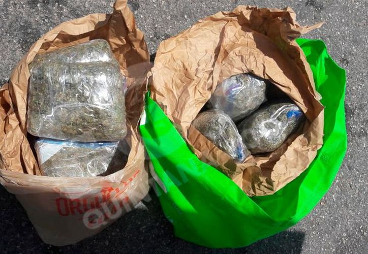 La marihuana decomisada y fue puesta a disposición del Fiscal del Ministerio Público. (Foto: Redacción)