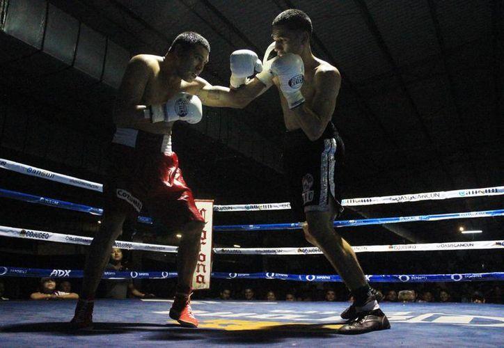 """Una noche boxística del proyecto """"Forjando Campeones"""". (Raúl Caballero/SIPSE)"""