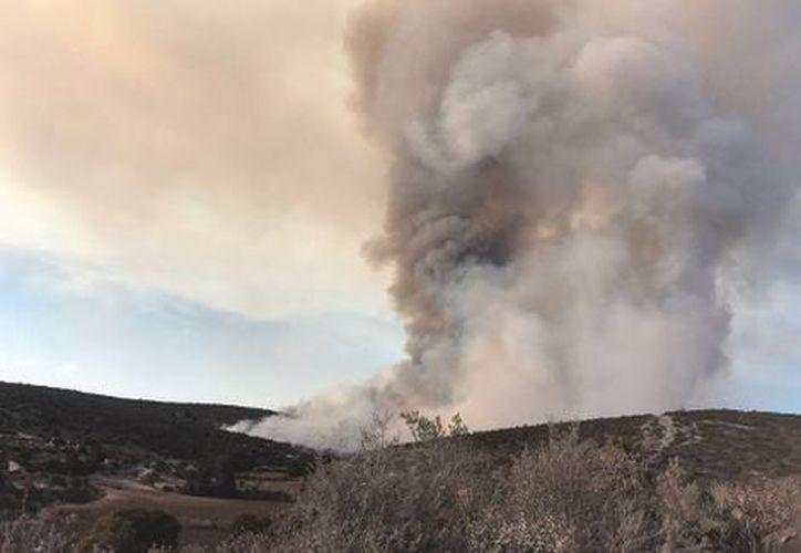 El más grave de los incendios se reportó en el municipio de San Martín Tilcajete. (Milenio).