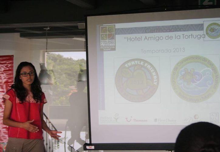 Los hoteles  realizaron prácticas en favor de la tortuga marina. (Octavio Martínez/SIPSE)