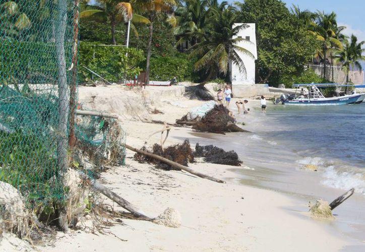 La Zofemat contempla solicitar estudios de suelo de la playa Shangri la para contrarrestar la erosión que sufre. (Octavio Martínez/SIPSE)