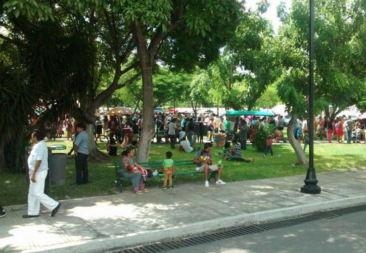 Las filas atraviesan el parque de La Paz. (Imagen/Facebook)