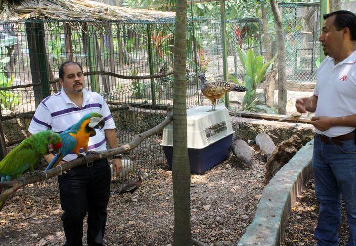 Consejales corroboraron mediante la visita física que el zoológico cumplió con todas las observaciones realizadas.  (Enrique Mena/SIPSE)