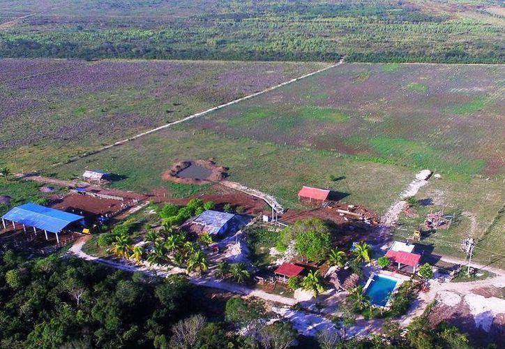 El Comisario ejidal, Ernesto Haro Gutiérrez, construyó su rancho, potreros, alberca y se encuentra devastando la selva de la propiedad del Instituto Tecnológico. (Javier Ortiz/SIPSE)