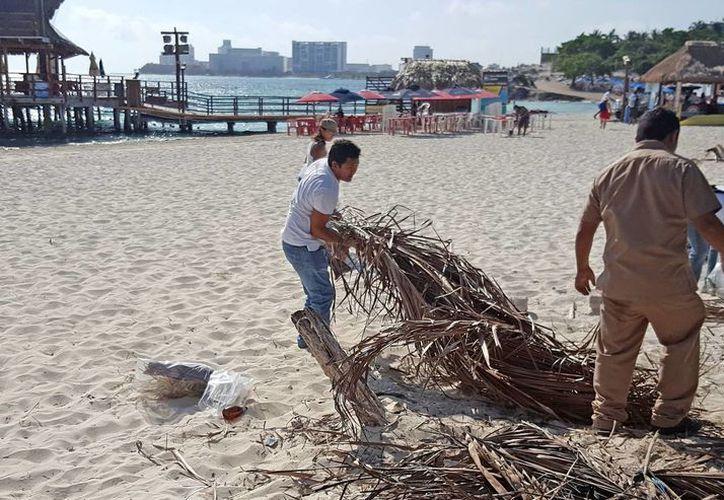 En la limpieza de Playa Tortugas participaron alrededor de 15 personas. (Jesús Tijerina/SIPSE)