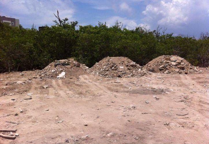 La Profepa recolocó 10 sellos de clausura a las obras que realizaba el hotel Grand Coral, por daños a manglares.  (Octavio Martínez/SIPSE)