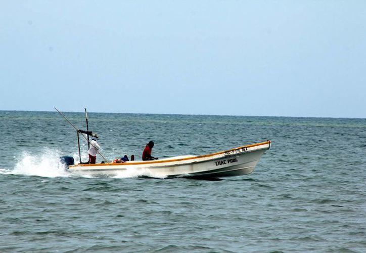 Los pescadores yucatecos atraviesan por una buena época. (Milenio Novedades)