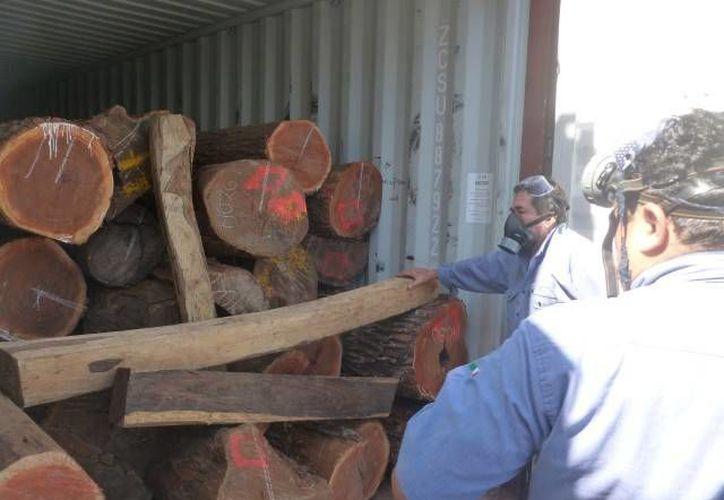 La madera estaba en un contendedor listo para su embarque hacia el puerto de Hong Kong, China. (Cortesía)