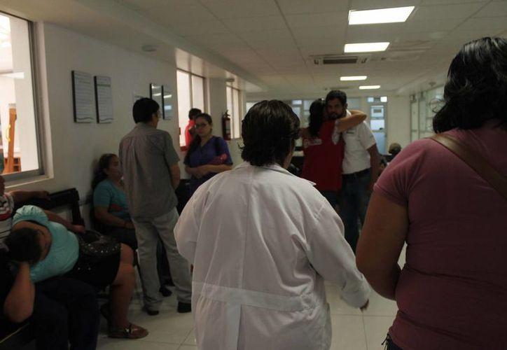 Un sexagenario se desplomó cuando limpiaba un terreno; tenía deshidratación. (Claudia Martín/SIPSE)