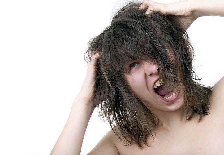 Existen remedios naturales para evitar la picazón en la cabeza. (Foto: Contexto)