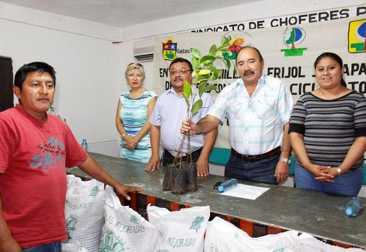 También se entregaron plantas de ramón y pich para reforestar praderas. (Raúl Balam/SIPSE)