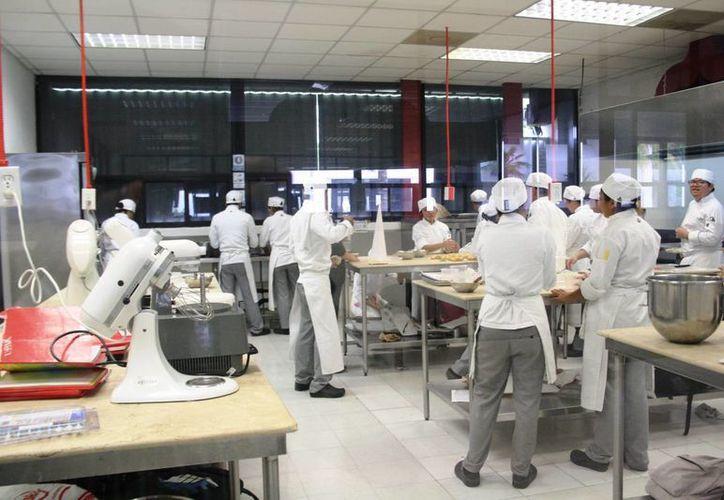 El ICAT ofrecerá 19 talleres durante el verano para todas las personas que quieran capacitarse. (Octavio Martínez/SIPSE)